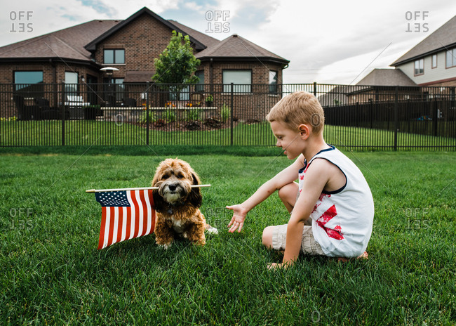 Little boy playing with a dog holding an American flag
