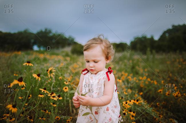 Little girl standing in a field of flowers