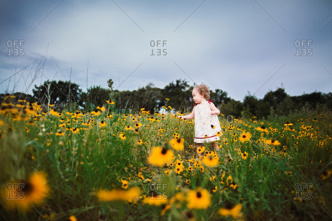 Little girl standing in a field of flowers
