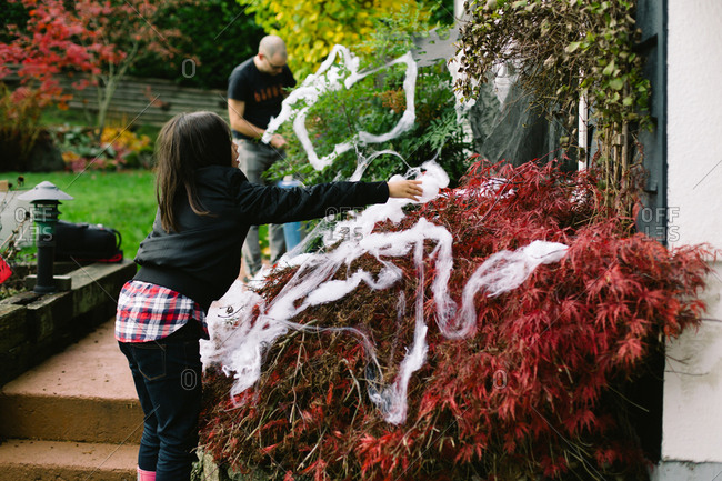 Father and daughter decorating bushes with spider webs
