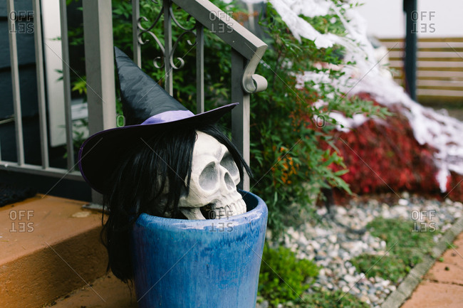 Skull decorated as a witch for a Halloween decoration