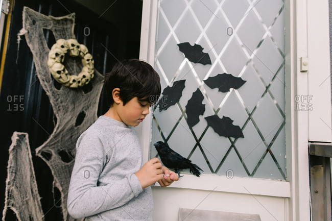 Boy decorating door with bats for Halloween