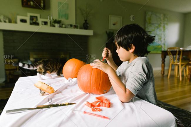 Boy carving pumpkins while kitty runs across table