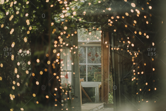 Alternative wedding, garden shed, strings of lights