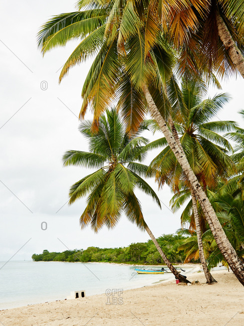 A beach area in Dominican Republic