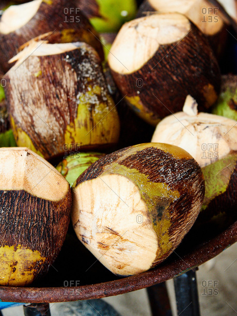 Shaved coconuts in Dominican Republic