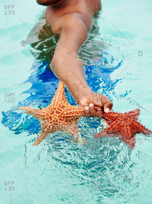 Person in ocean holding starfish