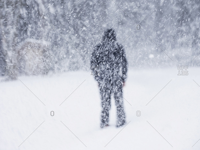 Rear view of man standing in snow