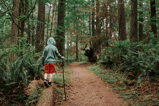 Boy balancing on a log on a hiking trail