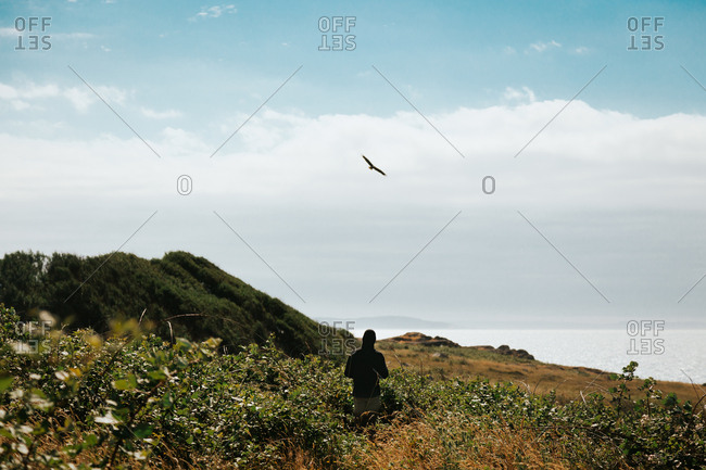 Man watching an eagle flying along coast
