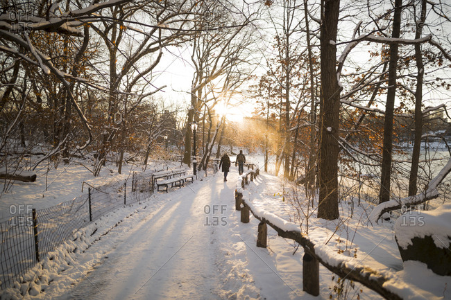 Two people out for a walk on a cold winter morning in Central Park in New York City