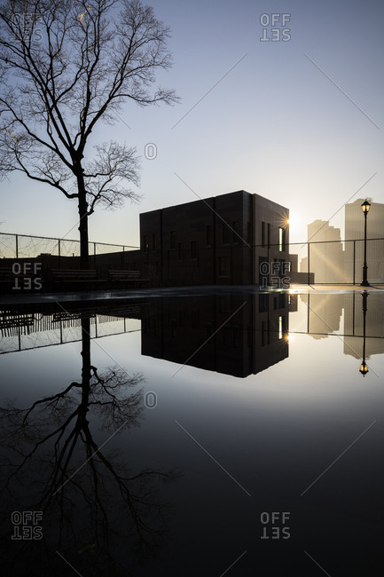 A building and tree reflected in a giant puddle in Brooklyn Heights, New York