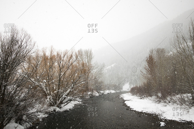 Snow falling over mountain stream