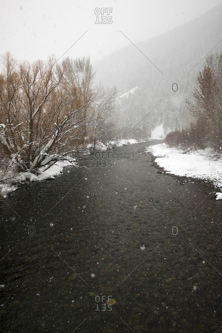 Snow falling over a mountain stream