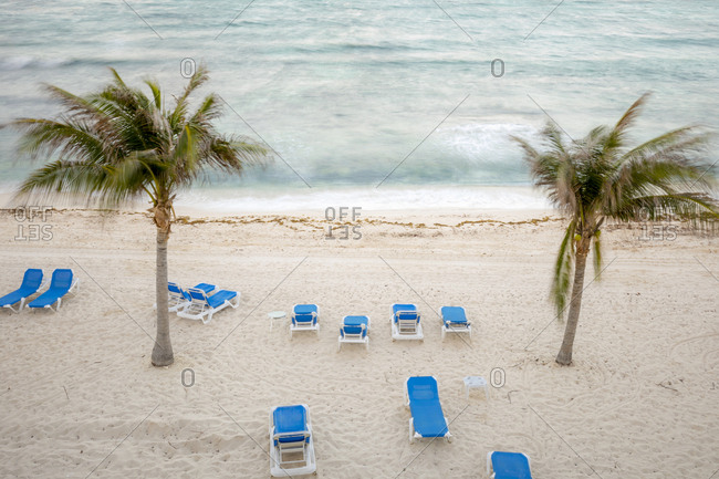 Beach with lounge chairs and palm trees