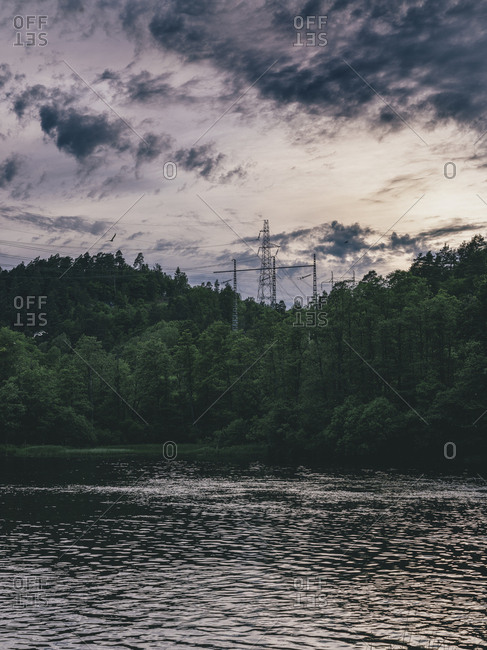 A forest and power lines on the water's edge