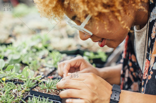 Close-up of woman examining plant in nursery