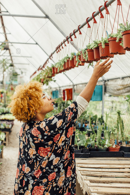 Side view of woman reaching for potted plants hanging on rod in nursery