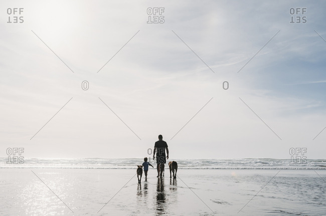 Rear view of father and daughter with dogs walking at beach against sky