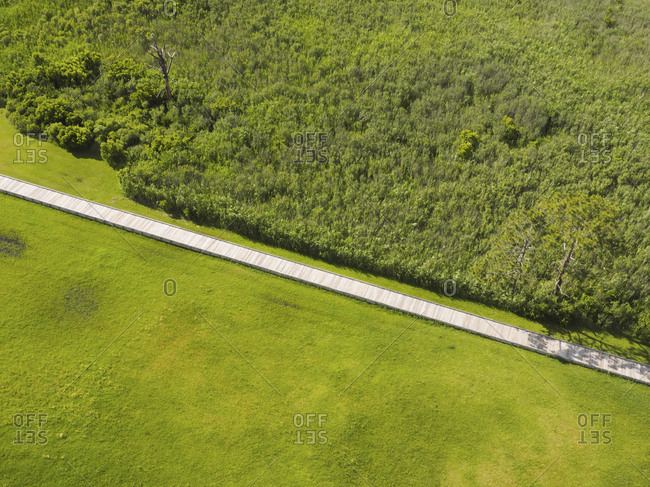 Overhead view of boardwalk amidst green landscape