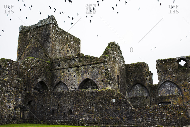 Low angle view of birds flying over old abandoned castle