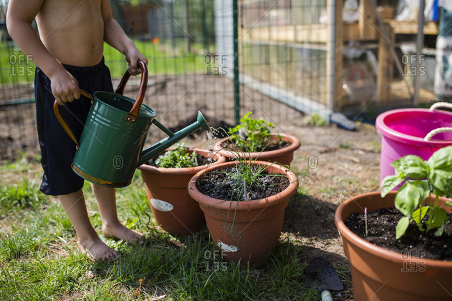Low section of shirtless boy watering potted plants at backyard