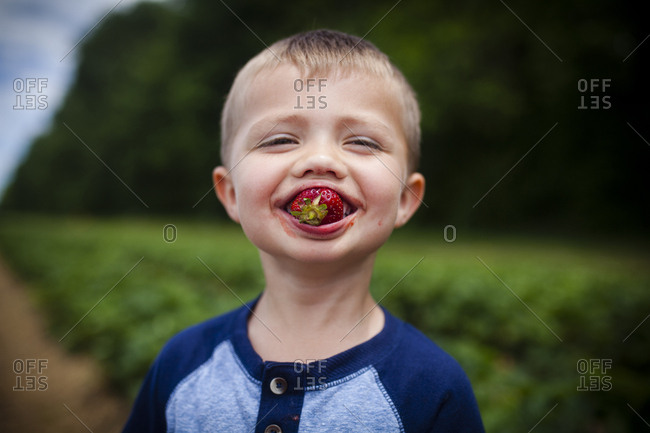 Portrait of happy boy eating strawberry while standing on field