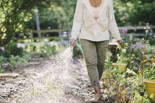 Low section of woman watering plants in garden