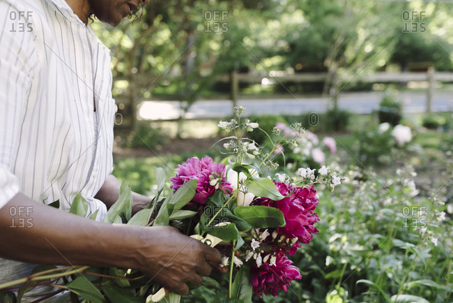 Midsection of woman holding freshly harvested flowers in garden