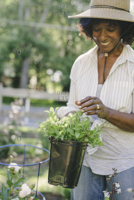 Happy mature woman holding potted plant at garden