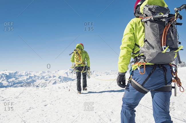 Rear view of friends with rope walking on snow covered mountain against clear blue sky