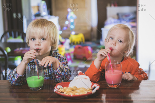 Portrait of brothers drinking juice while sitting at table in house