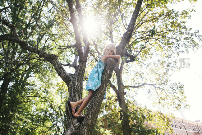 Low angle portrait of girl standing on tree