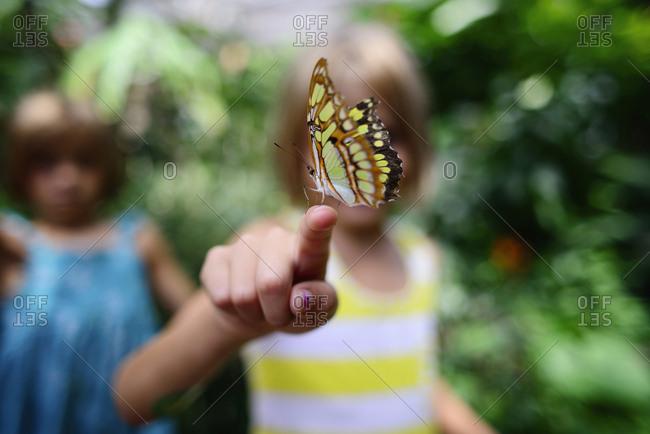 Butterfly on girl's finger at park