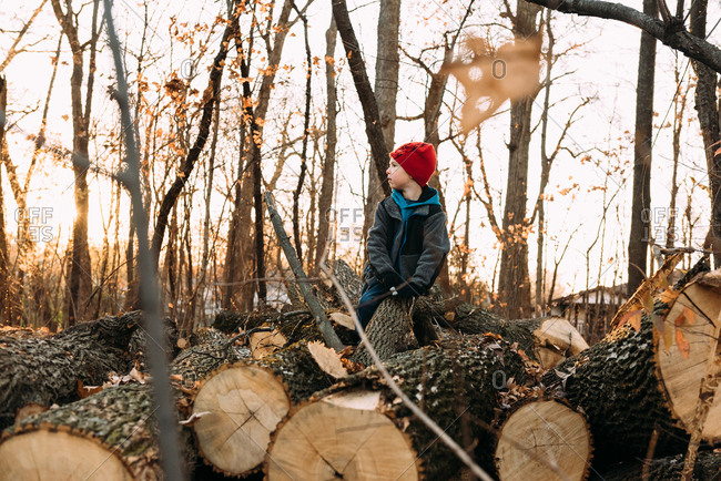 Boy looking away while sitting on log at forest