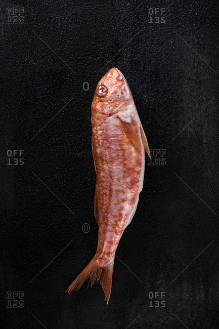 Overhead view of fish on black textured surface