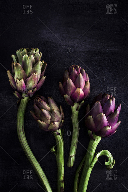Overhead view of artichokes arranged on black background