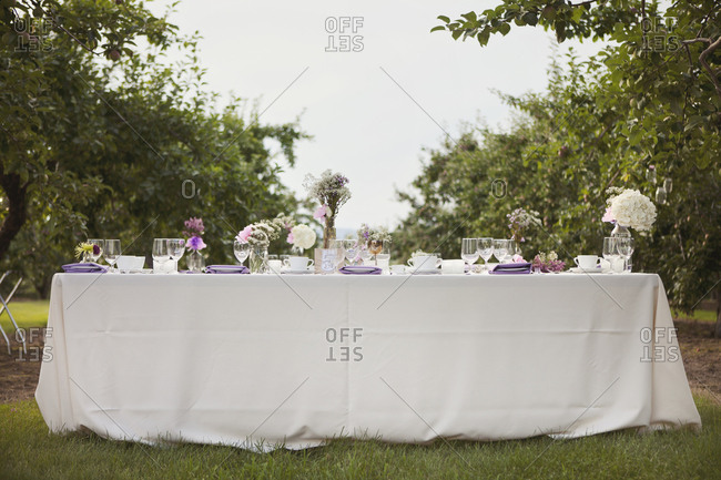 Head on shot of a rustic wedding table setting in an apple orchard