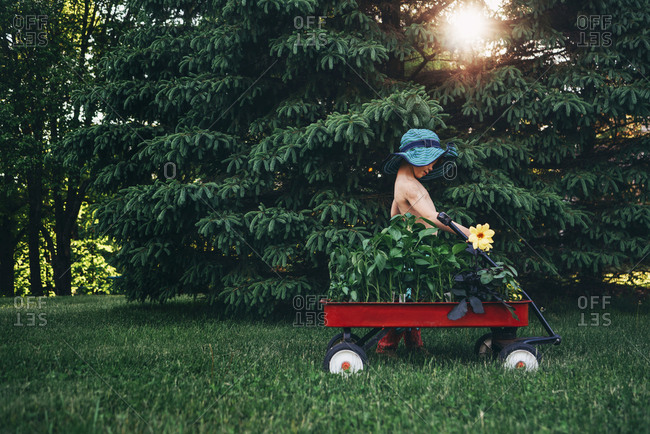 Young boy with garden hat and wagon