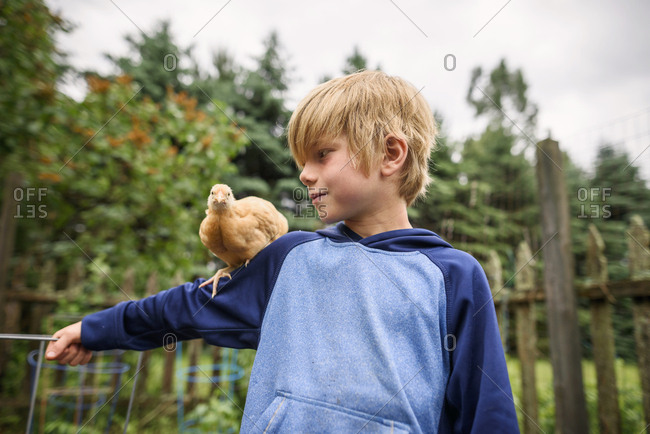 Young boy holding a chicken in a garden