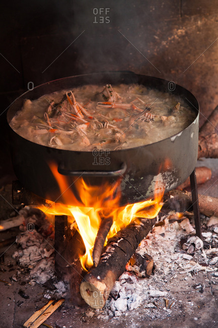 Seafood boiling in a large pot over an open flame