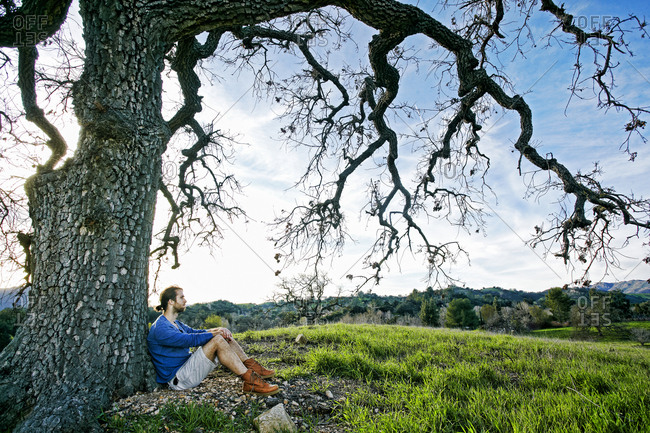 Caucasian man sitting in field leaning on tree trunk