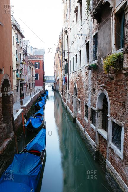 Venice, Italy - May 8, 2010: Covered gondolas in the early morning in Venice Italy