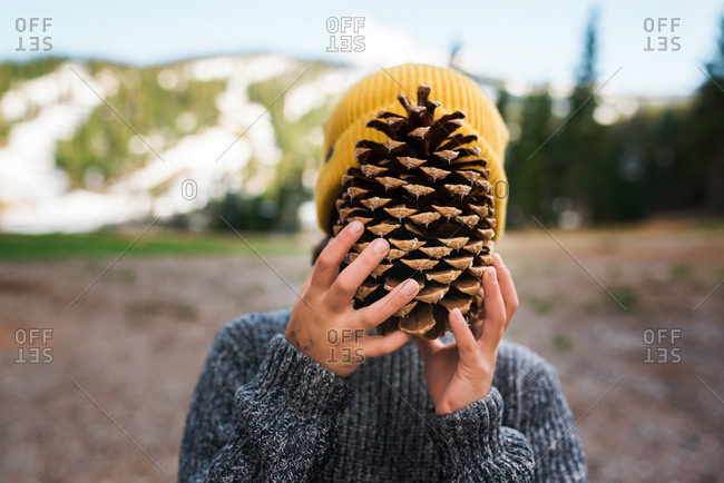 Boy covering face with large pine cone