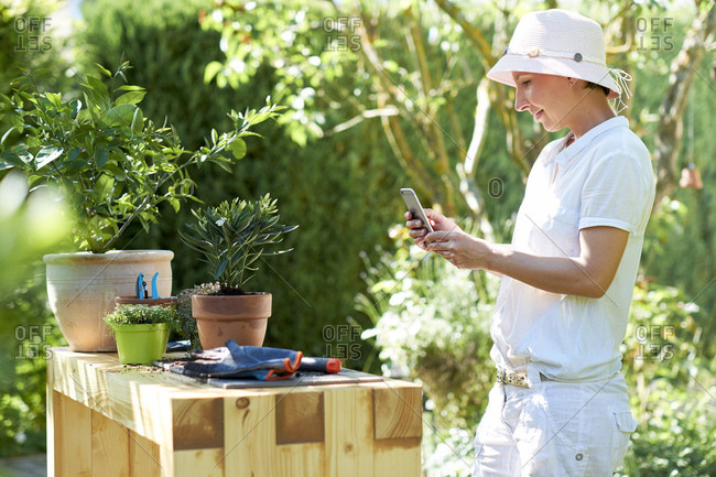 Woman taking cell phone picture of potted oleander at table in garden