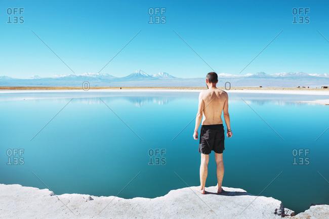 Chile- Atacama Desert- back view of man standing at Laguna Cejar