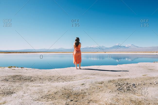 Chile- Atacama Desert- back view of woman standing on edge of Laguna Cejar