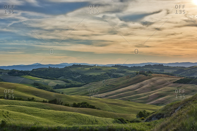 Italy- Tuscany- Val d\'Orcia- rolling landscape