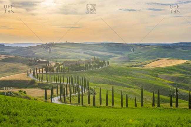 Italy- Tuscany- Val d'Orcia- Baccoleno farmhouse