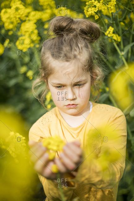 Girl examining plant in rape field